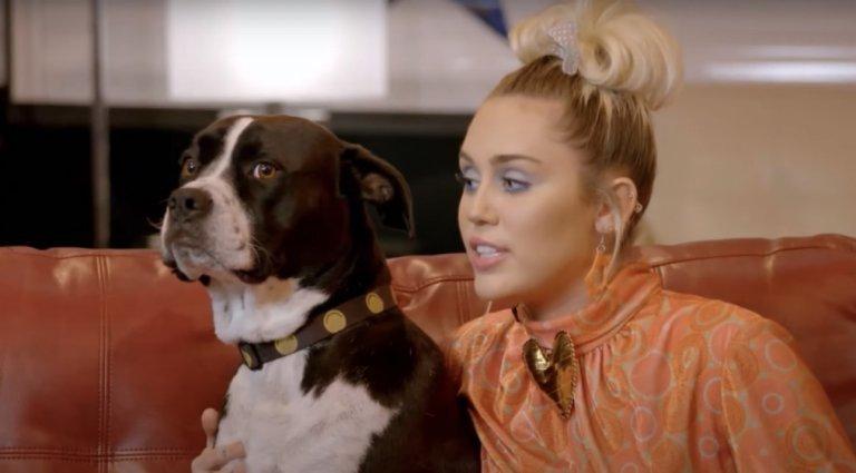 Miley Cyrus lanza una canción en homenaje a su fallecida mascota - Urbana 106.9 FM